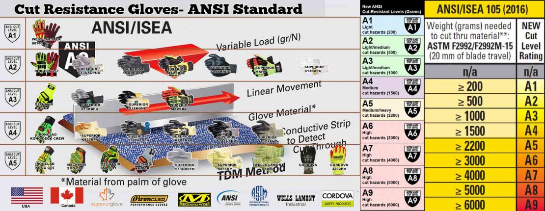 ansi-cut-level-banner-2